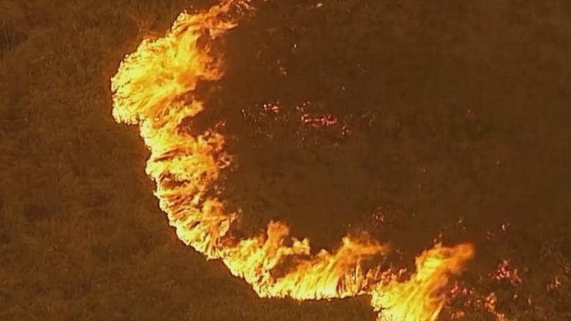 австралия отделя 425 млн долара възстановяване пожарите