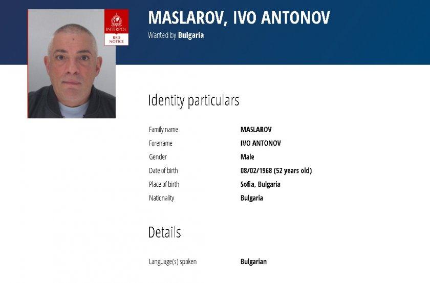 обвиненият поръчител убийството станка марангозова издирва интерпол
