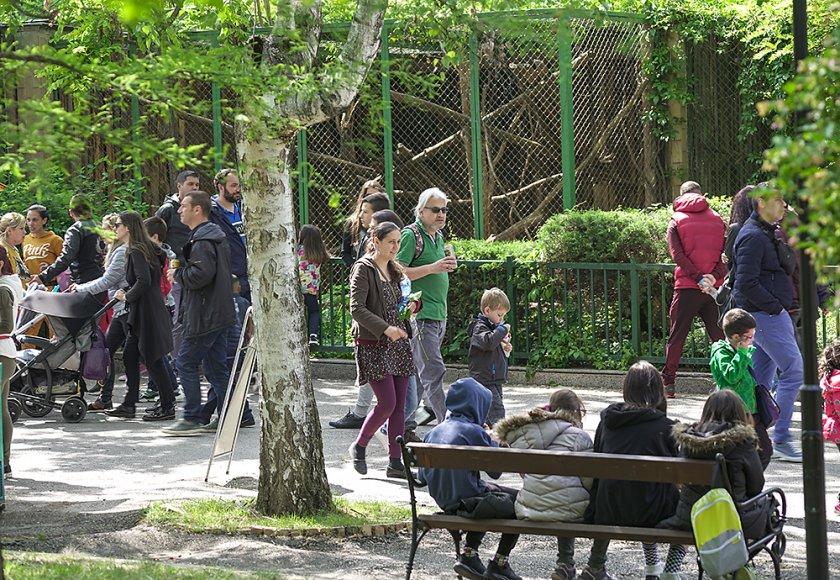 зоопаркът ndash вход свободен тълпи хора подплашени животни