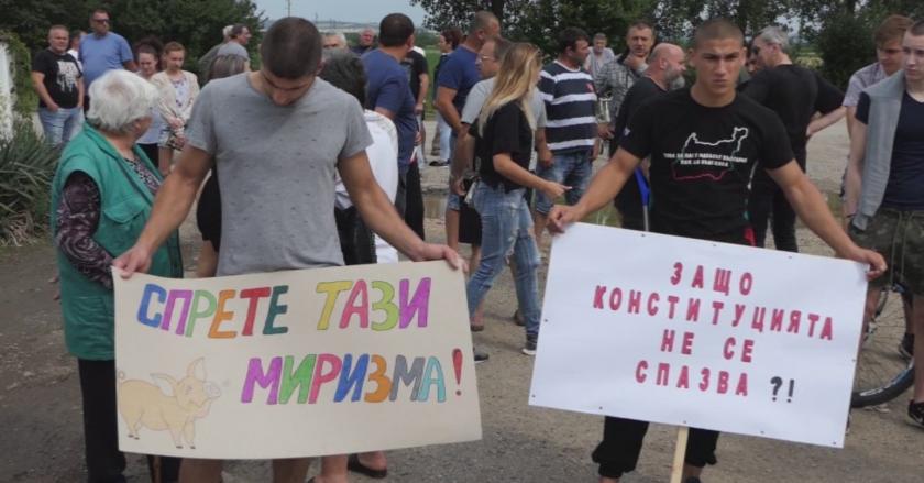 В Дунавци пак протестират заради замърсяване от свинеферма