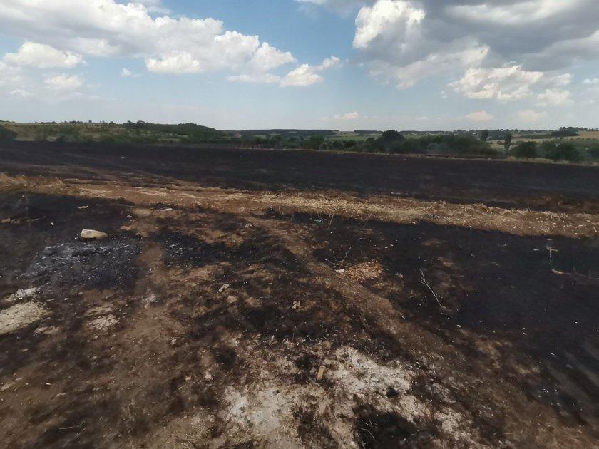 нов пожар изхода асеновград огънят вече потушен