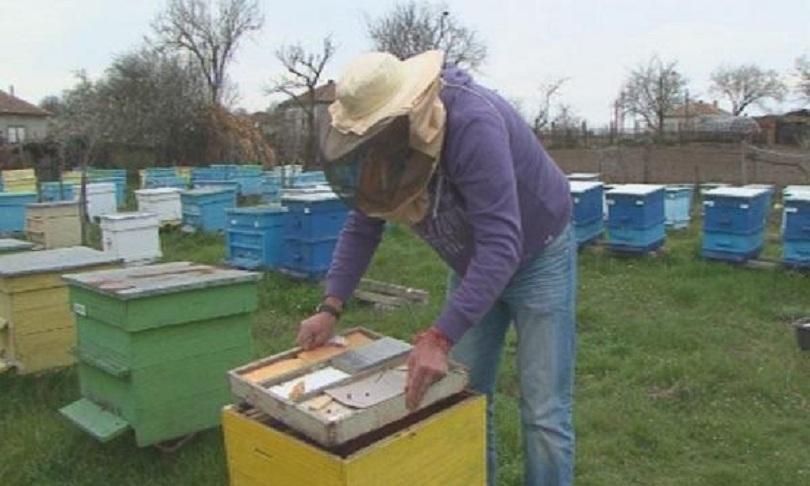 август животновъди пчелари кандидатстват minimis