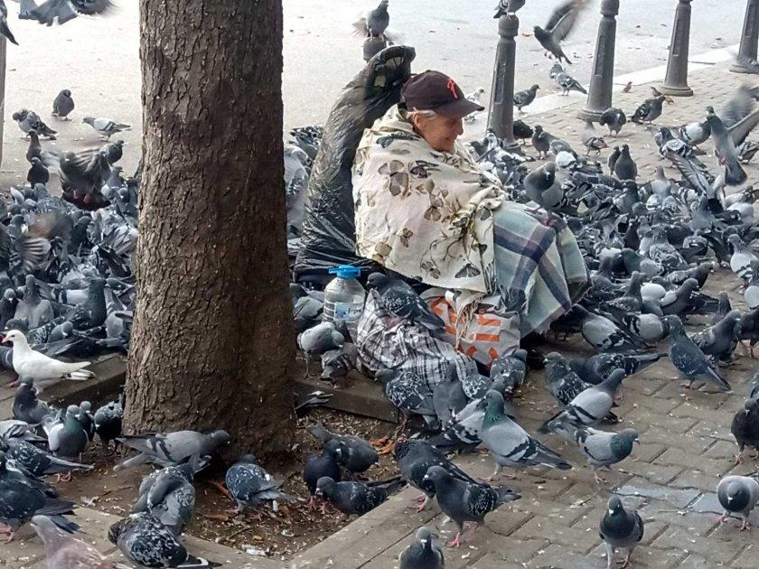 жената привлича магнит гълъбите