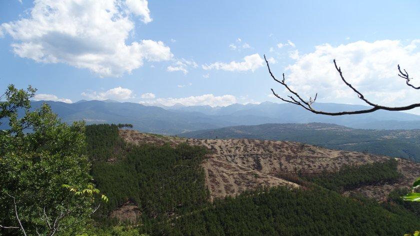 старите гори българия спечелиха вота европейските граждани наградите натура 2000