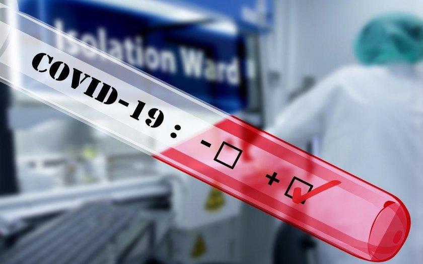 личните лекари вече дават направление безплатен pcr тест covid