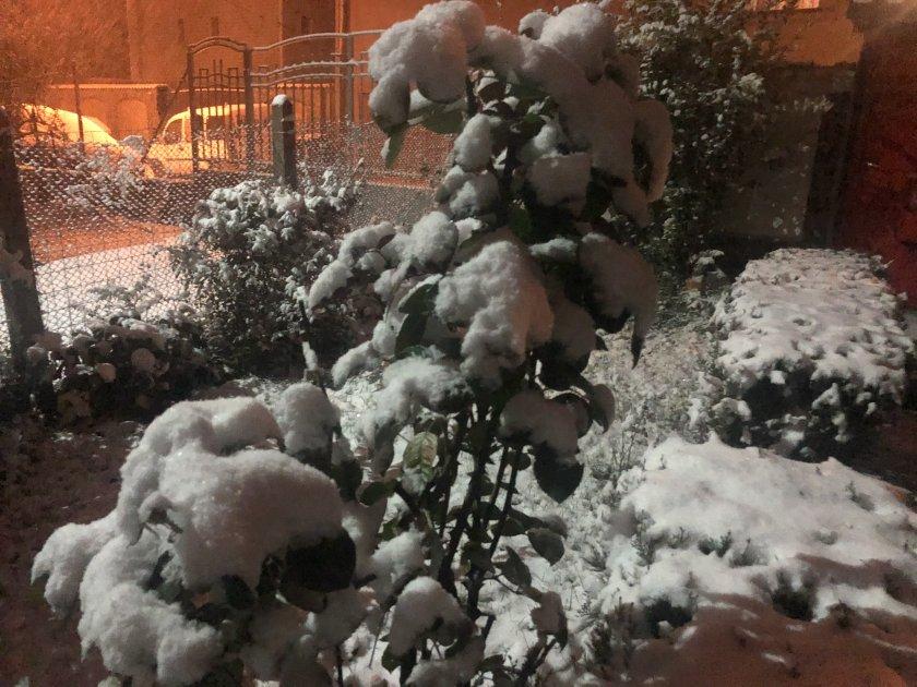 първи сняг софия снимки