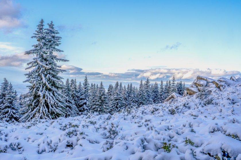 витоша любимо разходка зимата