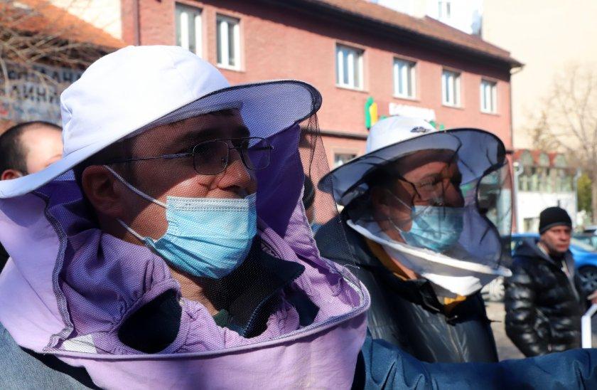 Пчеларите срещу държавата: Няма нито една мярка, която да компенсира загубите ни