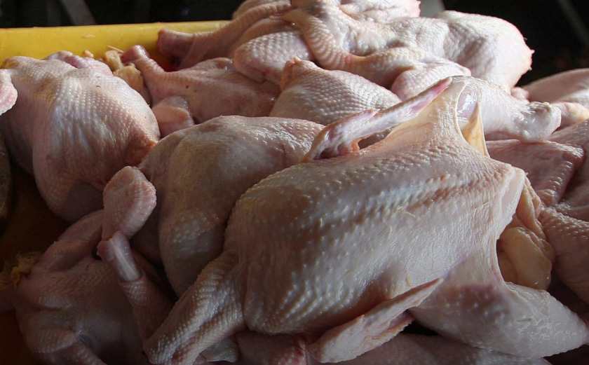 Унищожават близо 10 тона пилешко месо от Полша заради салмонела