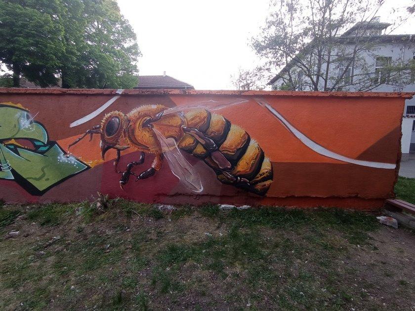 рисуват метрова стена графити международния ден пчелите