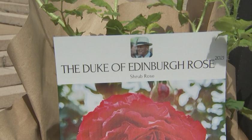 Елизабет Втора засади роза в памет на принц Филип