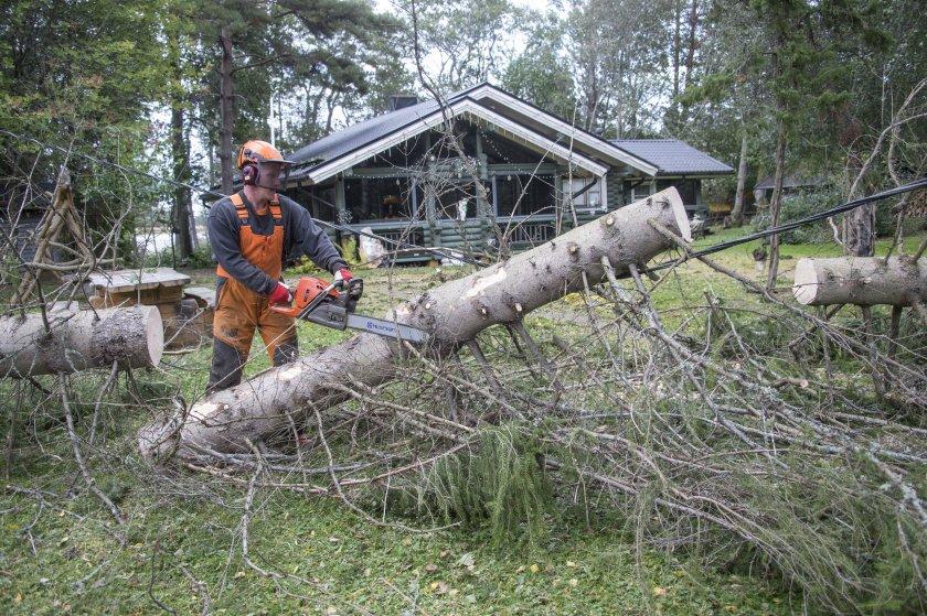 000 домакинства финландия без ток