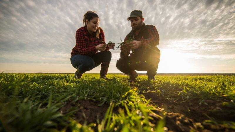 близо млн лева получиха младите земеделски стопани кампания 2020