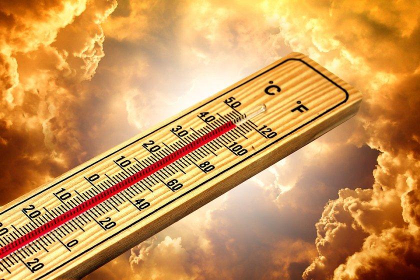 49,5 градуса температурен рекорд отчетоха в Канада