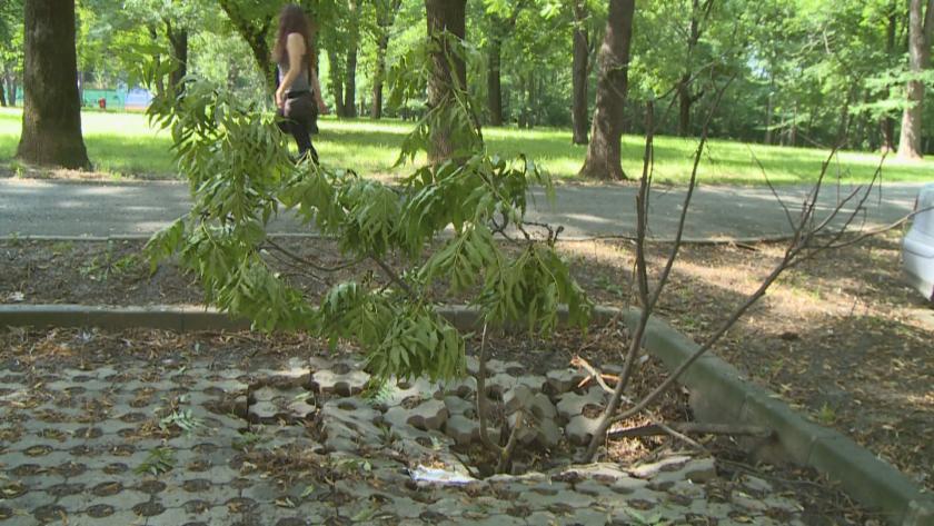 В Русе пропаднаха новоизградени паркоместа
