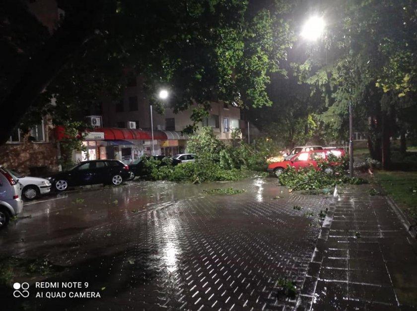 Паднали клони и скъсани ел. жици след бурята в Разград