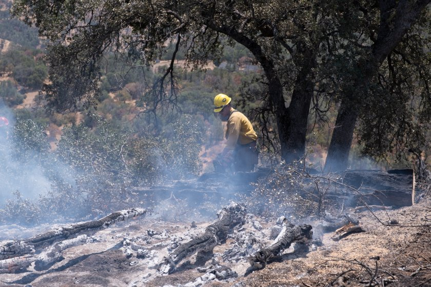 Пожари в Калифорния засегнаха магистрала и наложиха евакуация