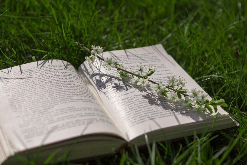 започва пролетният базар книгата