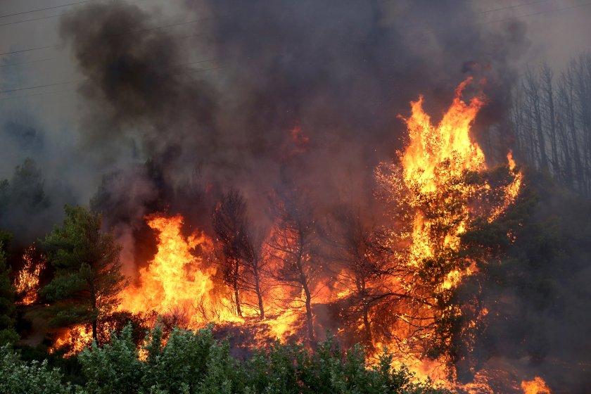 република северна македония обяви дневна кризисна ситуация заради пожарите