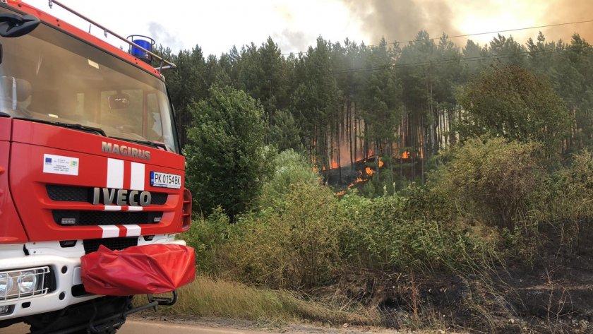 голям пожар бушува гората перник видео