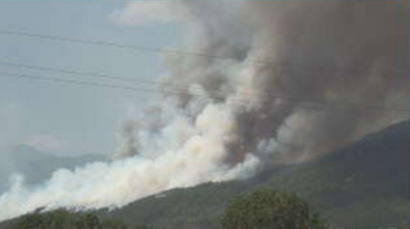 Пожарът край Розино е почти локализиран, няма опасност за населението