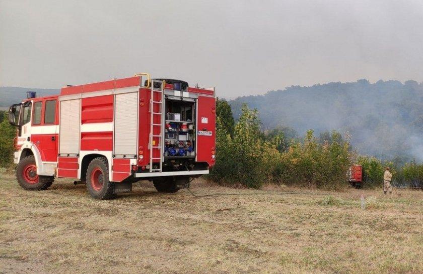 Овладян е пожарът в Брягово
