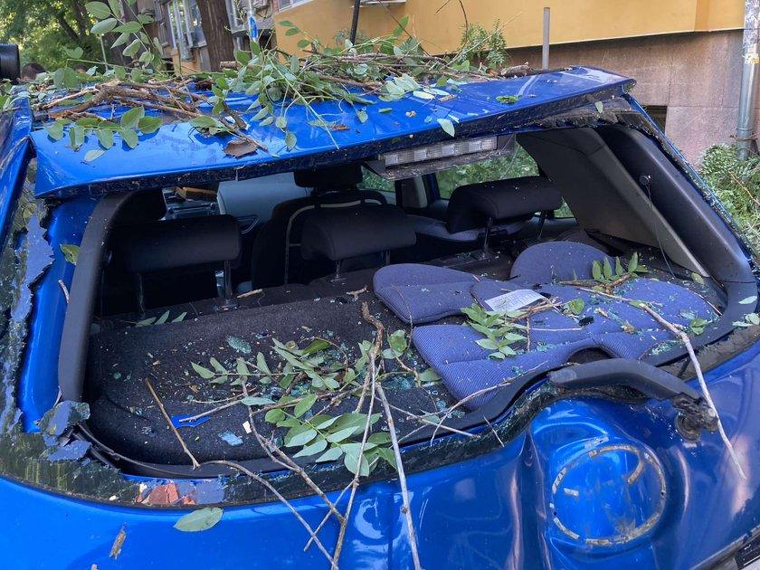 десетки паднали дървета сериозни щети колите бурята пловдив