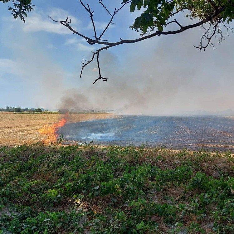 Нов пожар пламна в Пловдивско. Горят сухи треви между селата