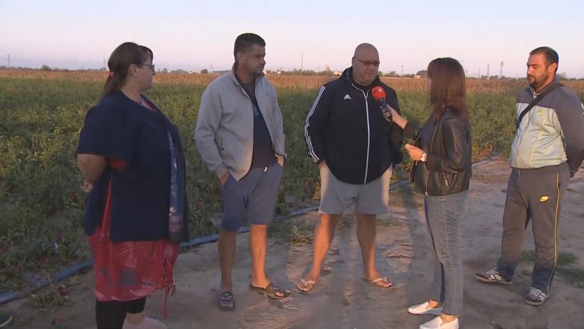 След градушката в Пловдивско: 64 хектара реколта е унищожена напълно (Видео)