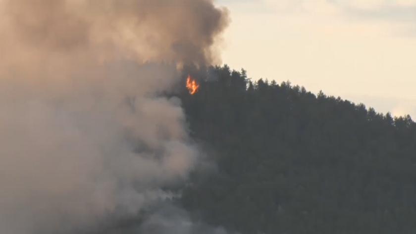 Горски пожар избухна в Кирковско
