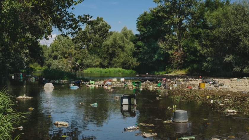 За чиста природа: Доброволци почистват поречието на река Струма край Кюстендил