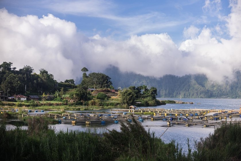 Ваканционният остров Бали в Индонезия беше отворен отново за чуждестранни