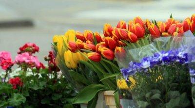 Спазвайки дистанция - поздрав за Цветница
