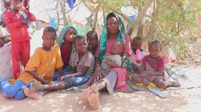 """ООН: Светът е заплашен от """"библейски глад"""""""