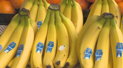 Над 3 200 училища ще получат млечни продукти, плодове и зеленчуци
