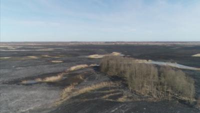Пожари в национален парк в Полша