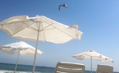 Хотелиерите по морето борят иновативно COVID-19. Паркингите – летни градини
