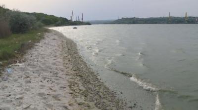 Огромно количество мъртва риба покри южния бряг на Варненското езеро