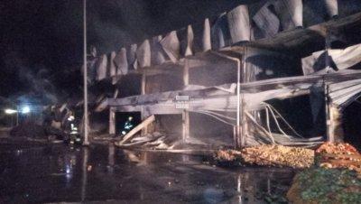 Двама души са леко обгорели при пожара на борсата край Петрич, няма опасност за живота им