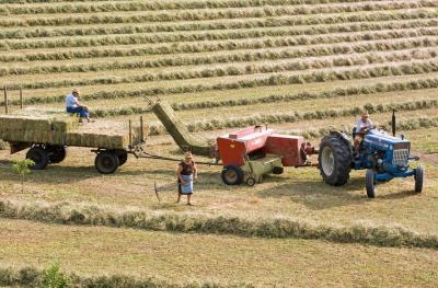 Безработните запазват социалните си помощи, ако се включат в сезонна селскостопанска работа