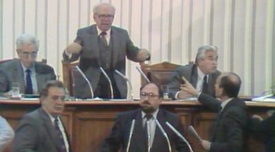 30 години от първите демократични избори у нас - успехите и несбъднатите очаквания