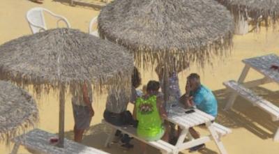 Масова отмяна на полети за летния сезон, бизнесът ще разчита на български туристи