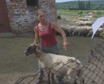 Върховният съд отмени заповедта за унищожаване на ферма в Болярово