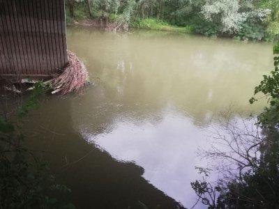 Сигнал за давещ се в река Марица