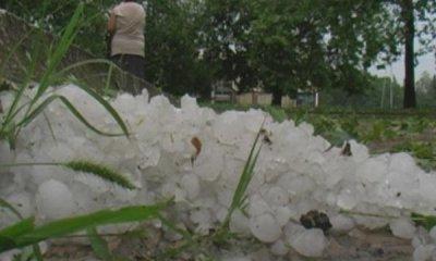 Градушка съсипа реколтата в три гоцеделчевски села