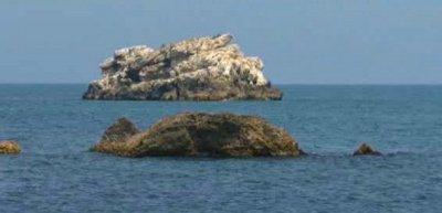 Еврокомисията дава България на съд заради директивата за морска стратегия