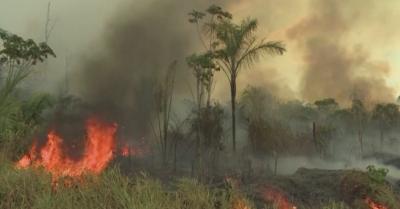 Големи пожари бушуват в Амазония