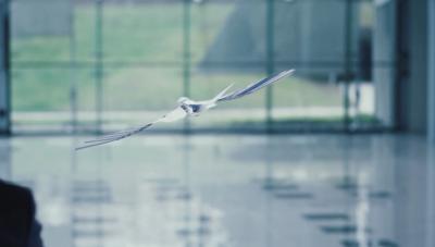 Германска компания създаде бионичен бързолет
