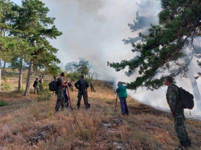 Военни помагат в гасенето на пожара над старозагорското село Дълбоки