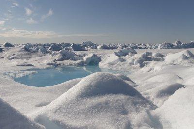 Отчетоха рекордно висока температура на норвежки арктически архипелаг